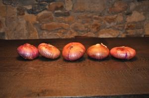 altCebollas rojas de Zalla en el restaurante Bascook de Aitor Elizegi en Bilbao
